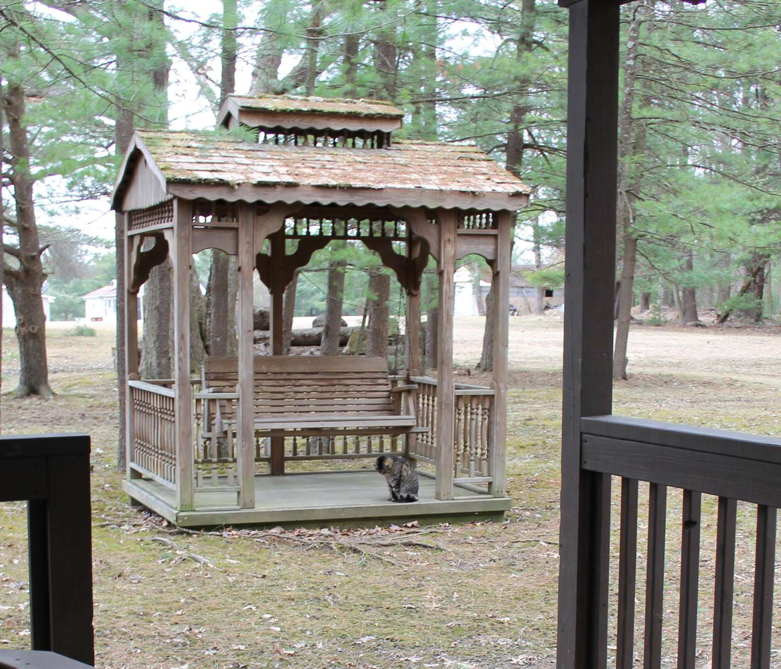 Gazebo at Blue Spruce