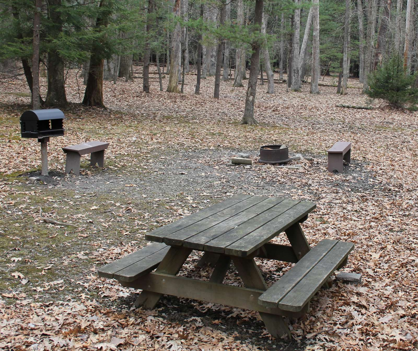 Picnic Area at Douglas Fir Cabin