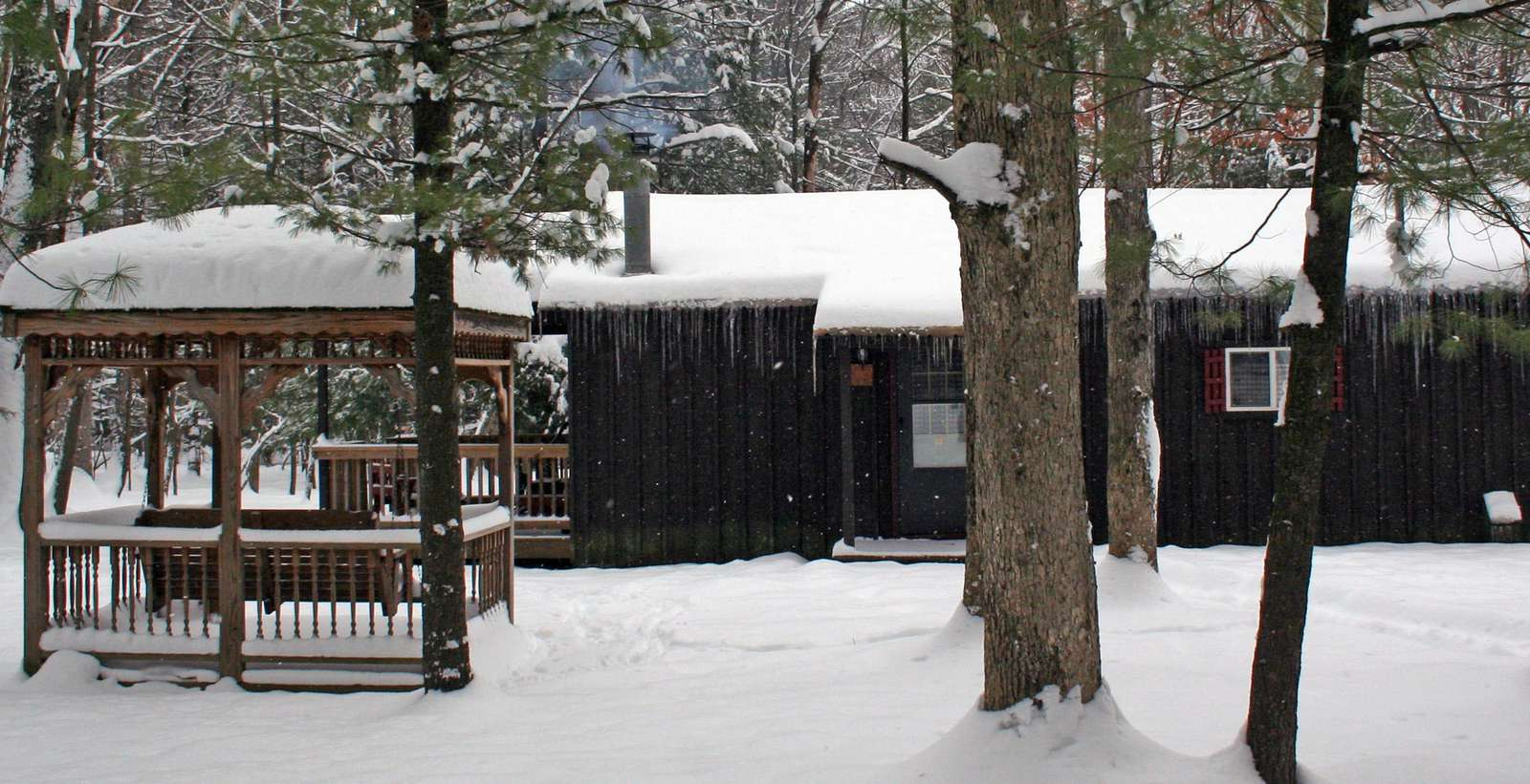 Winter Douglas Fir Cabin