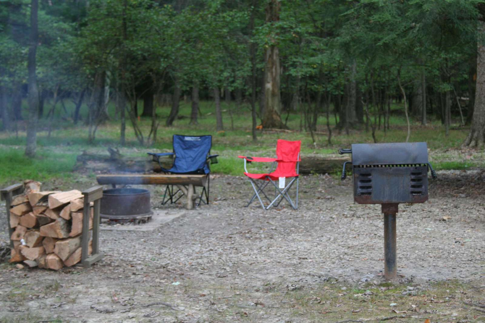 Douglas Fir Fire Pit, Charcoal Grill and Picnic Area