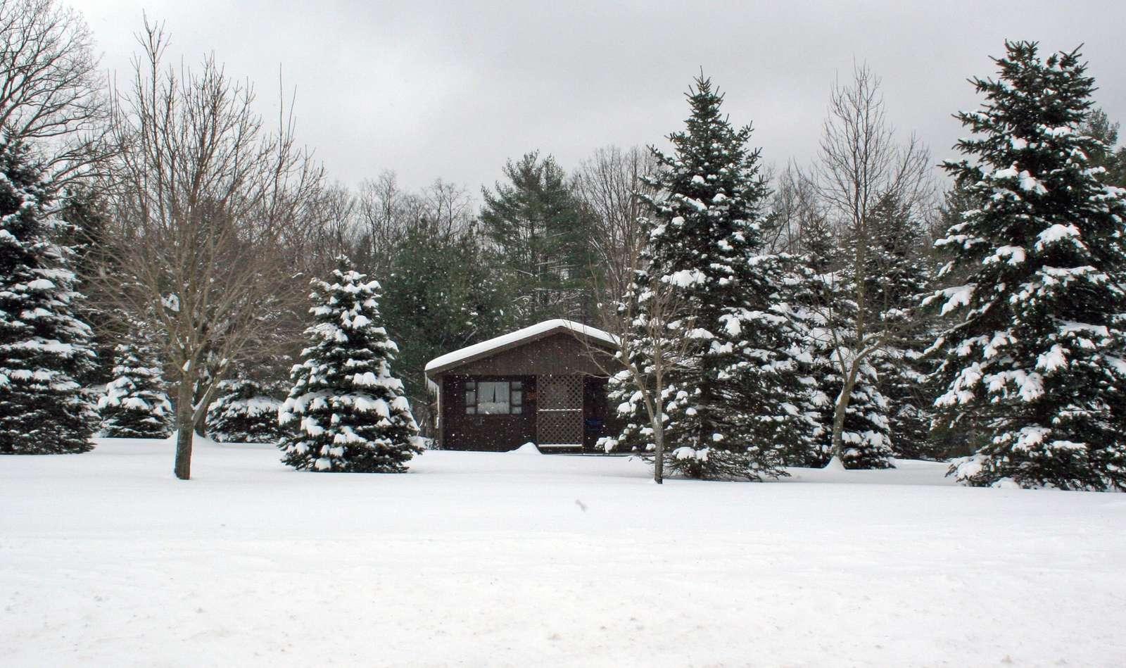 Sugar Pine Cottage - Snow 12-30-12