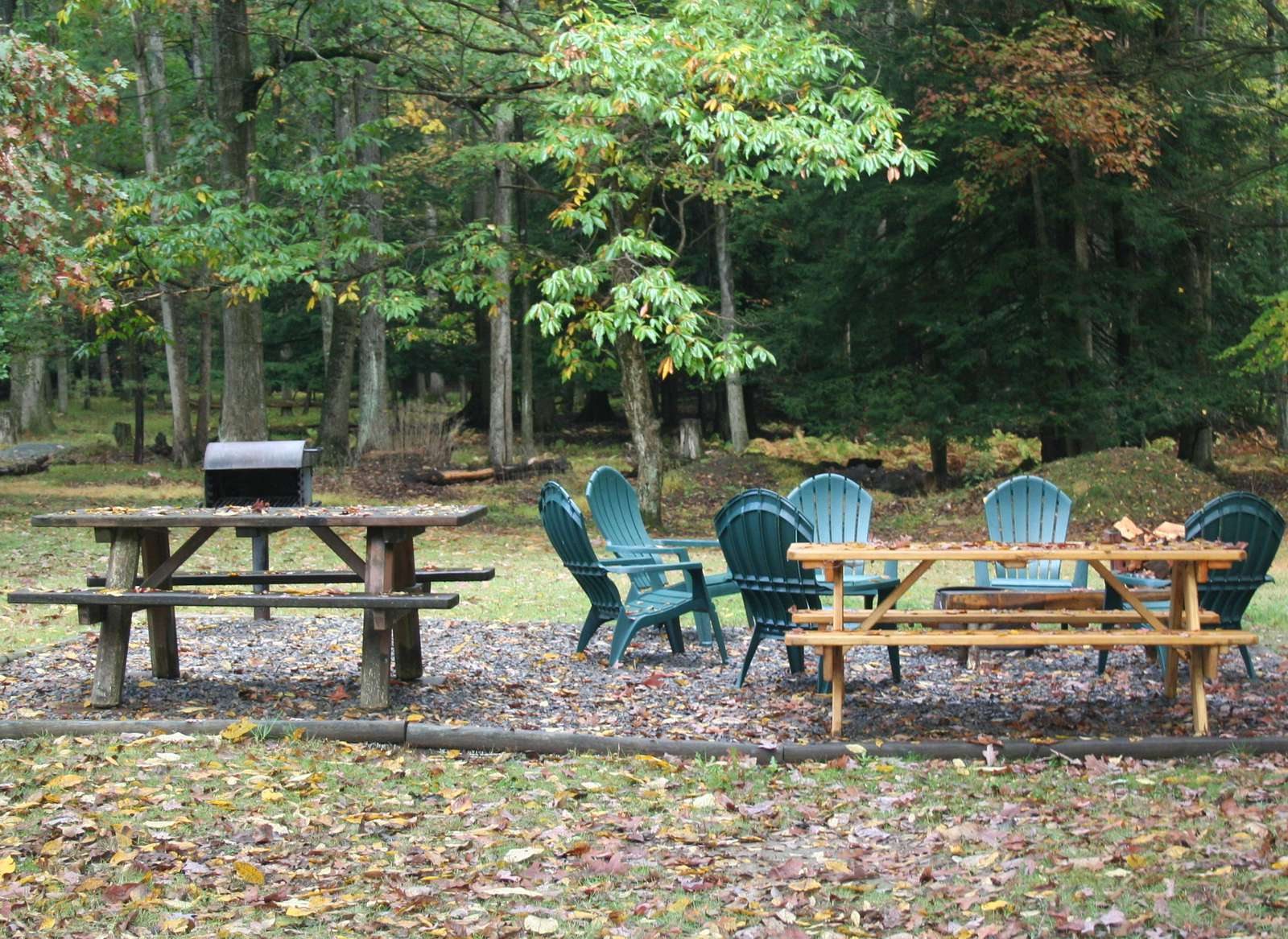 Fall at Old Hickory Cabin #5