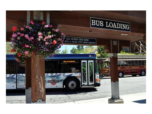 No car needed with Free Park City Bus System!