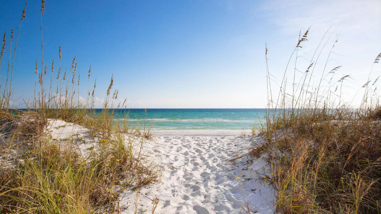 Just steps from your house to the turquiose waters of the Gulf!