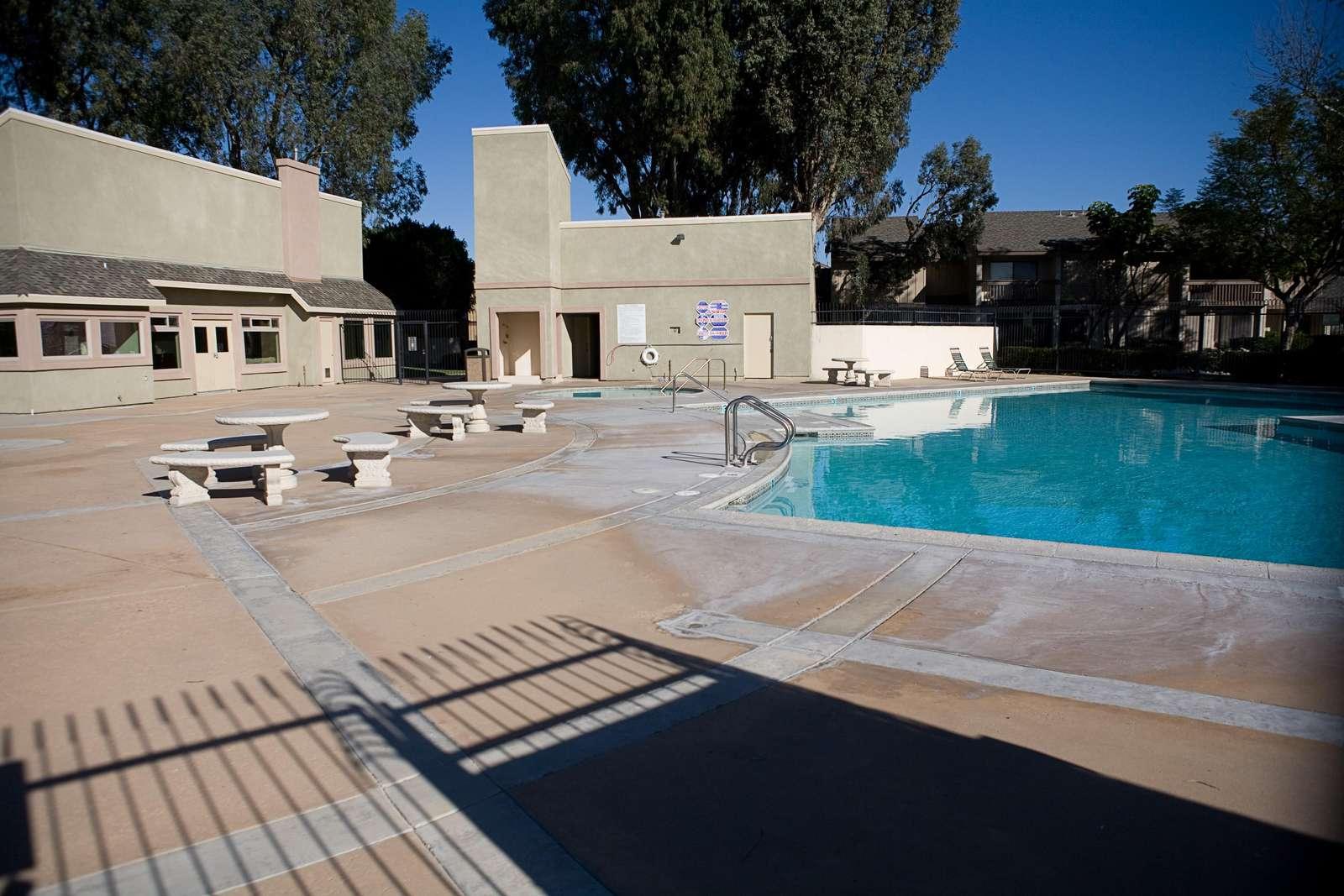 Large Pool #2