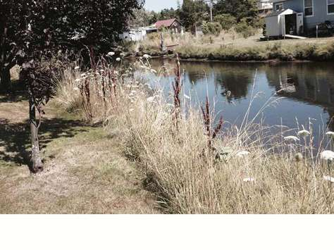 Canal behind property