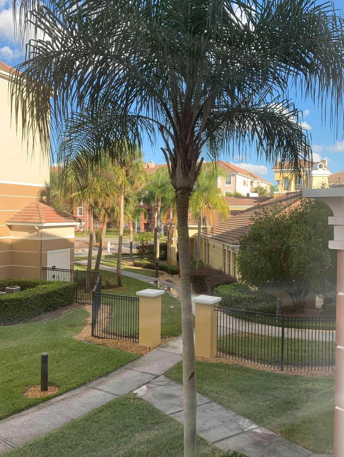 View from queen bedroom towards clubhouse - next door to pool