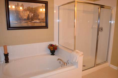 Master bathroom Roman tub and shower