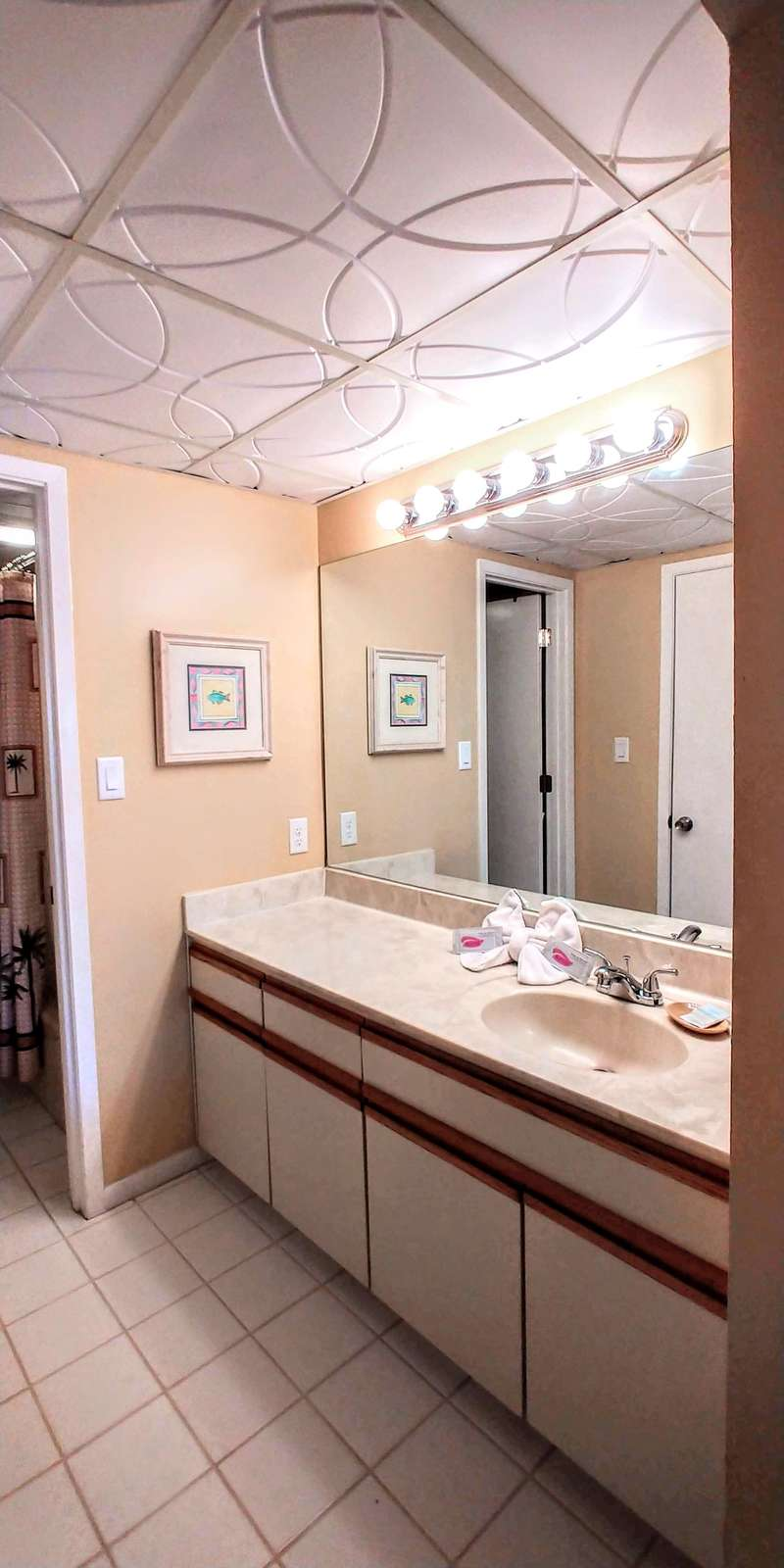 Master Vanity with large walk-in closet