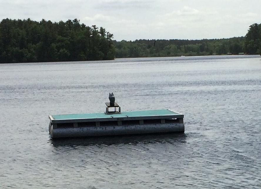 cottage swimmimg raft