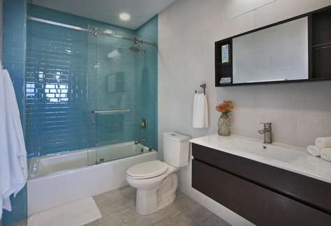 Downstairs Apartment Guest Bath