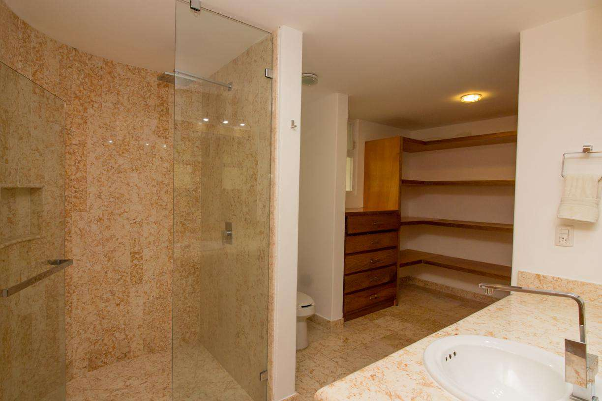 Ensuite master bathroom with shower and large closet