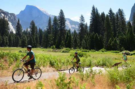 Plenty of trails to ride your bike at the valley floor.