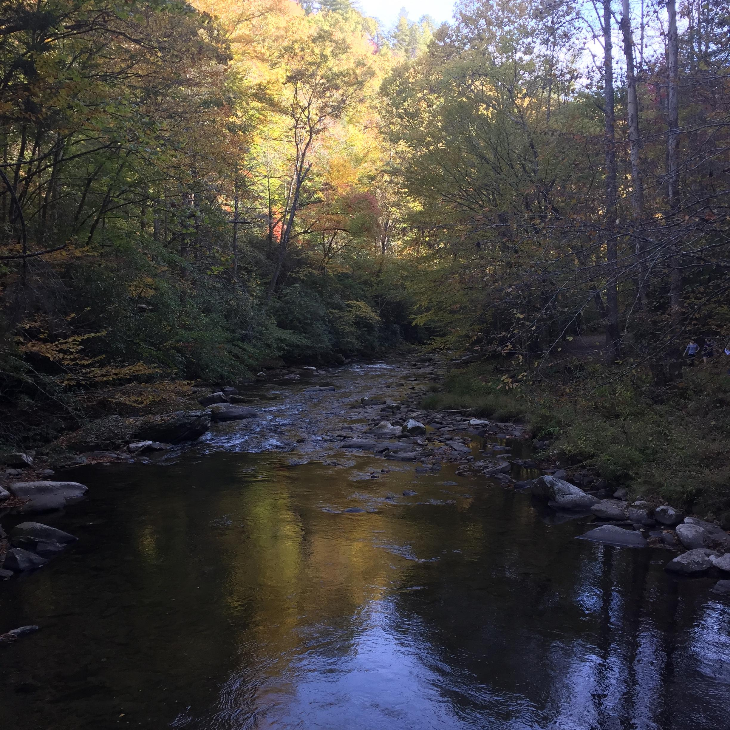 Deep Creek is just 20 minutes away, and offers Tubing and Trails to Hike