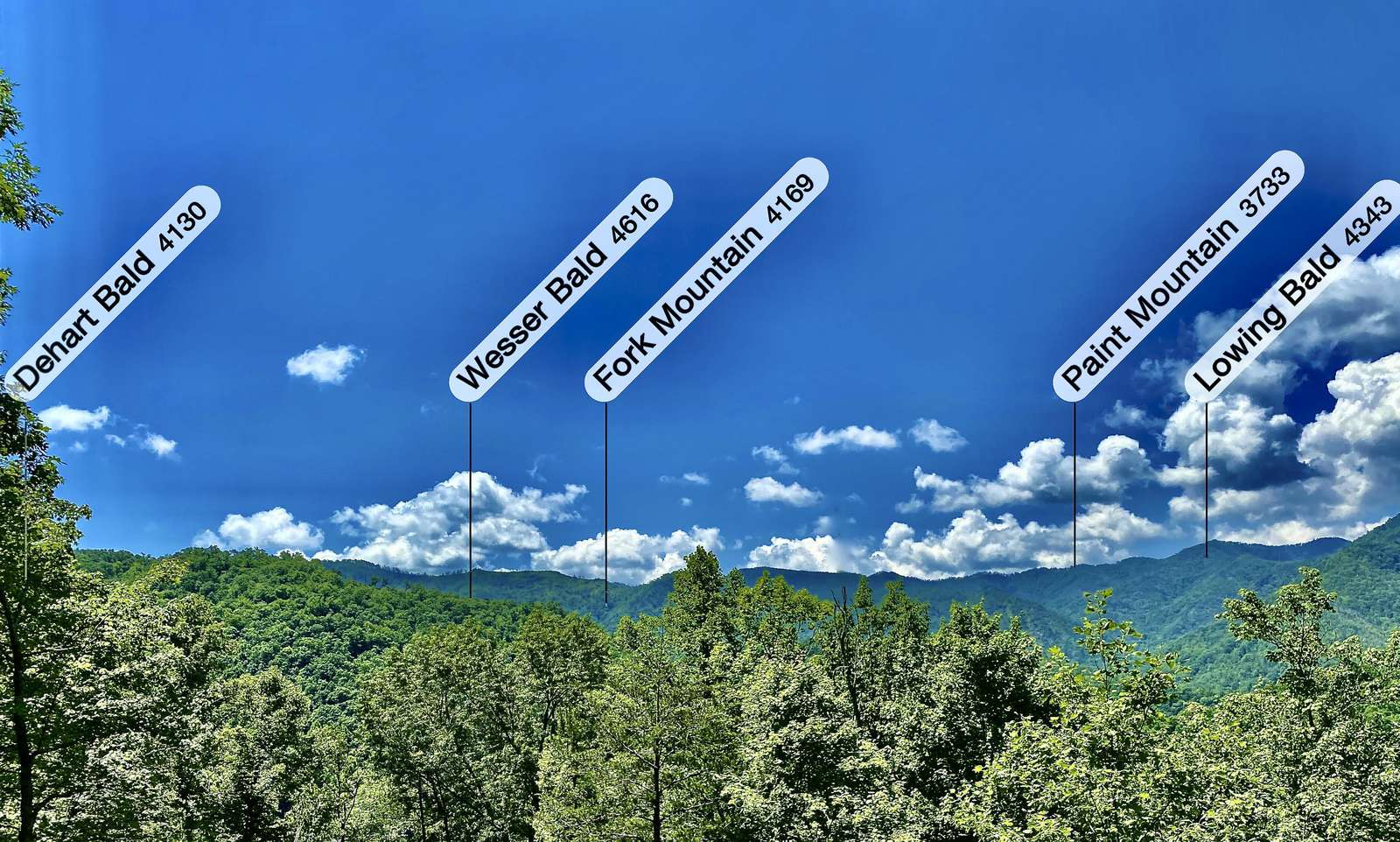 Looking out over the Nantahala National Forest! (If you bring Binoculars, you will see the Wesser Bald Fire Tower). You can hike to the Fire Tower - along a portion of the A.T.