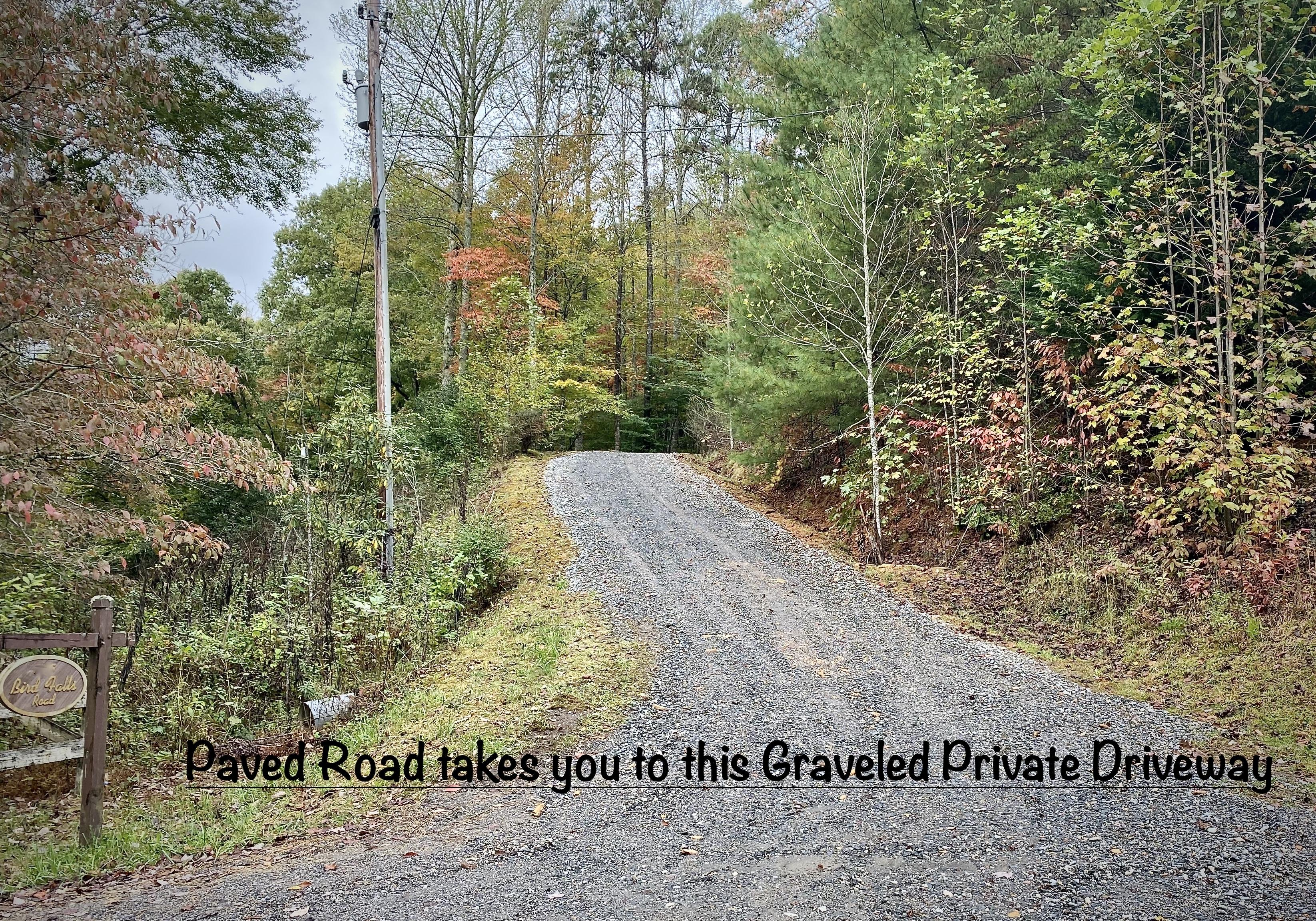 Paddlers Retreat's Private Driveway. The driveway curves to the right and the Cabin sits at the end, up on the Hill