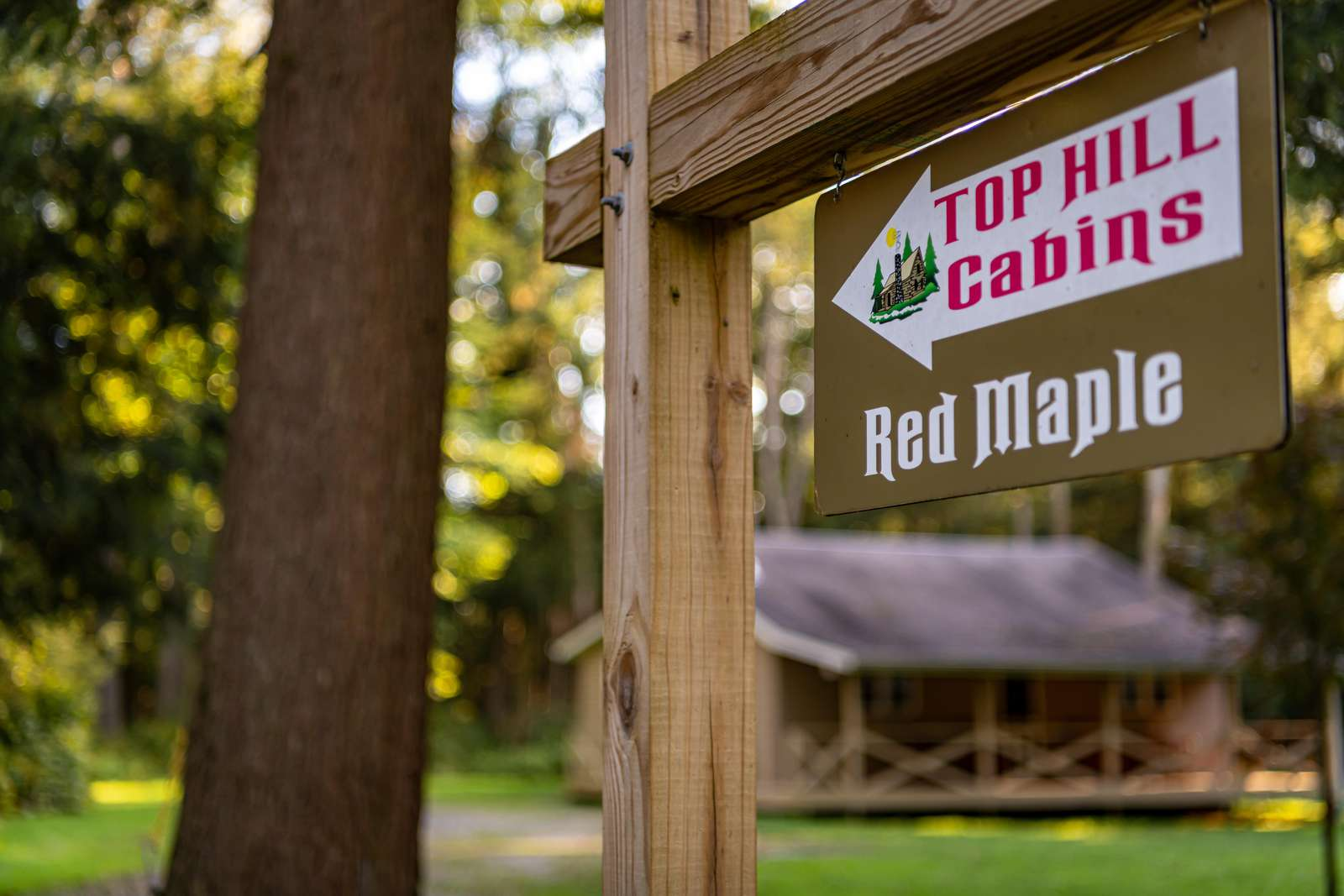 Red Maple Sign in front of the cabin