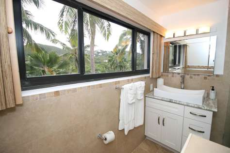 Even palm tree view from your bath