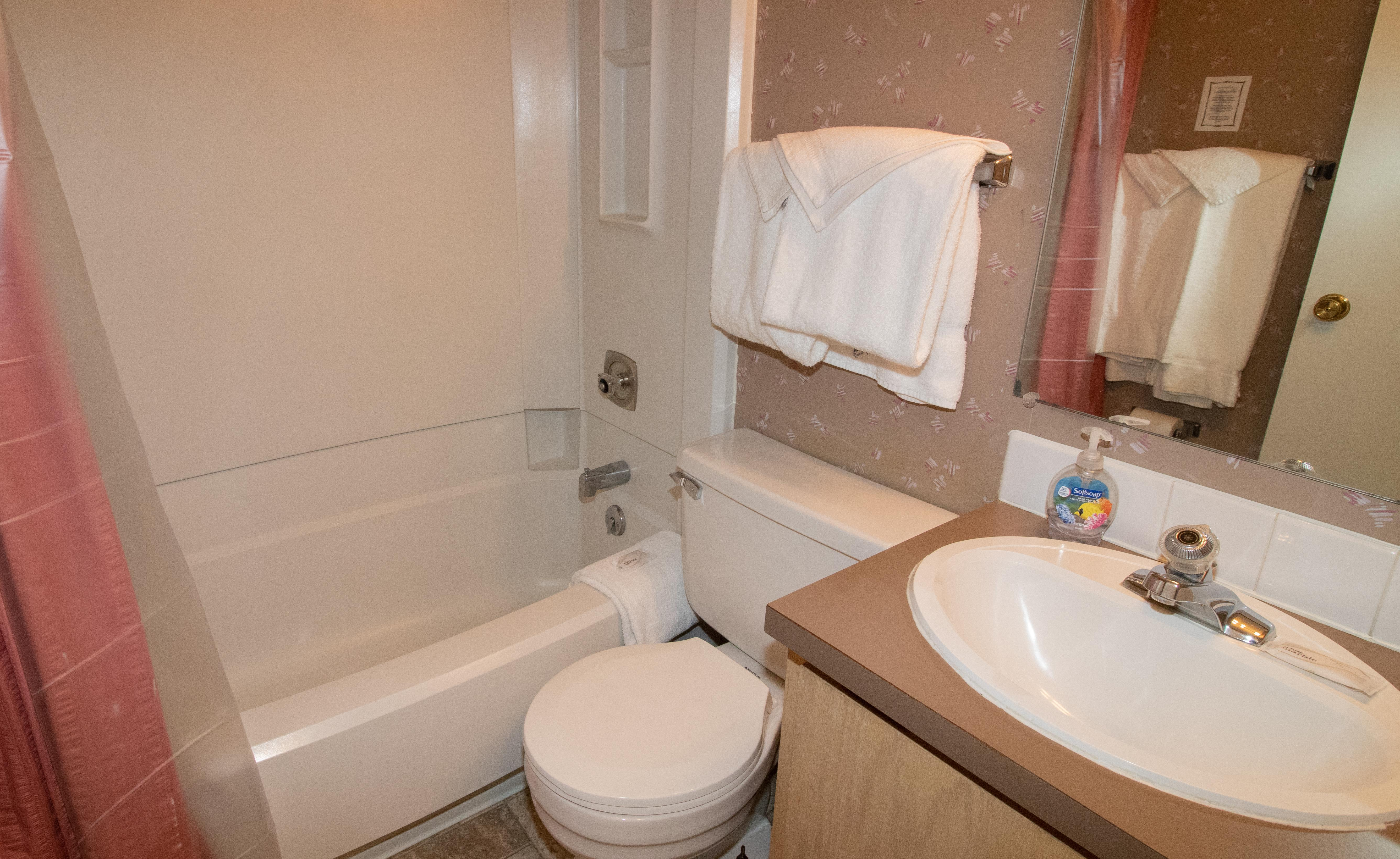 Tub/Shower combo in bathroom - CLEAN!