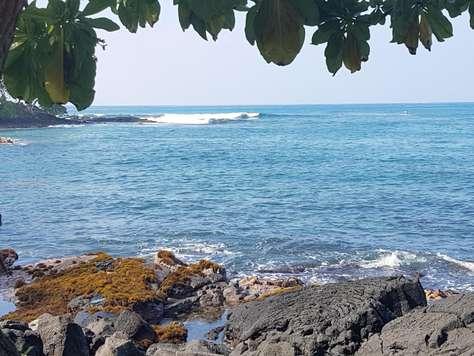 Prime surfing at Lymans 1 mi. north of condo