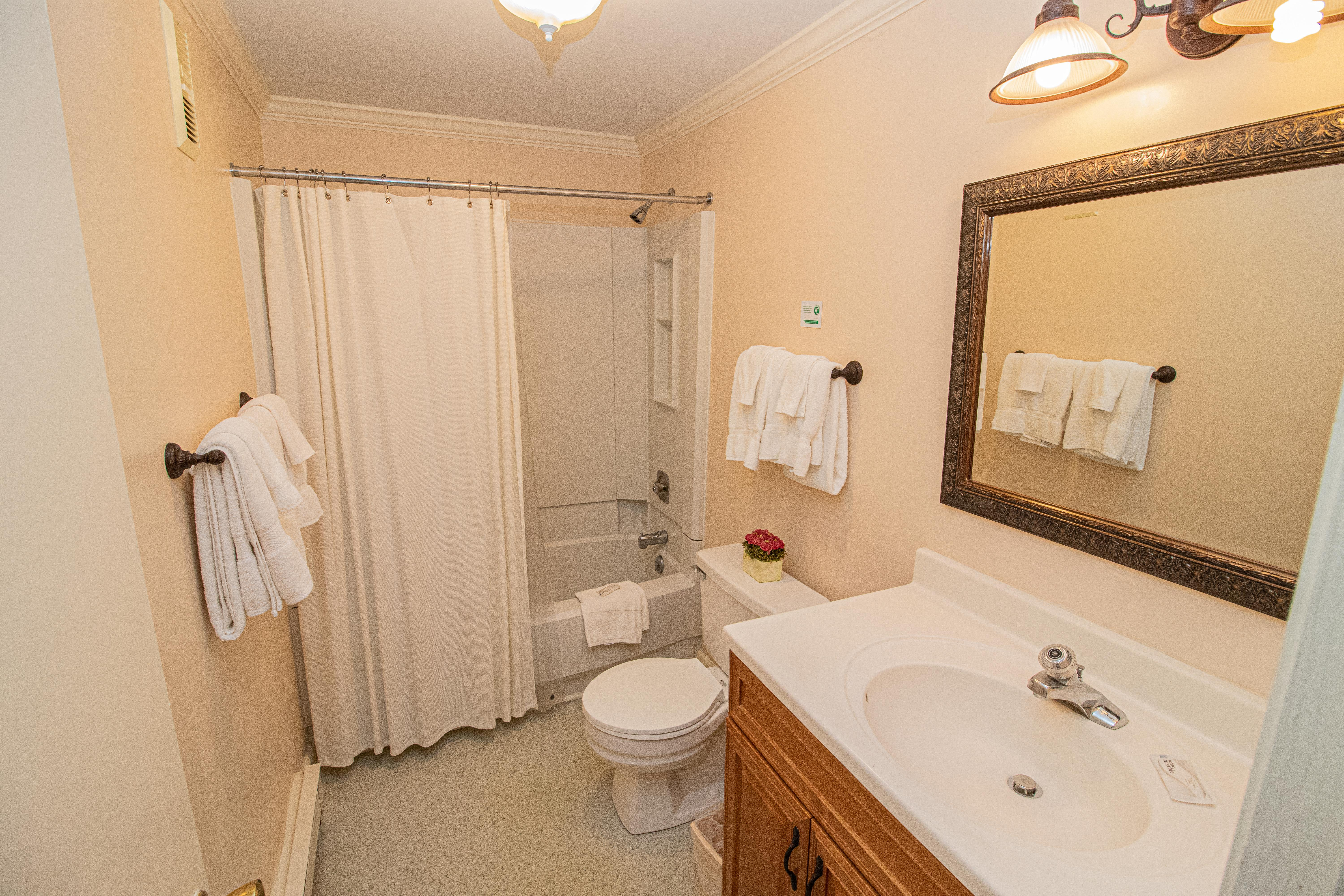 Private bathroom connected to master bedroom