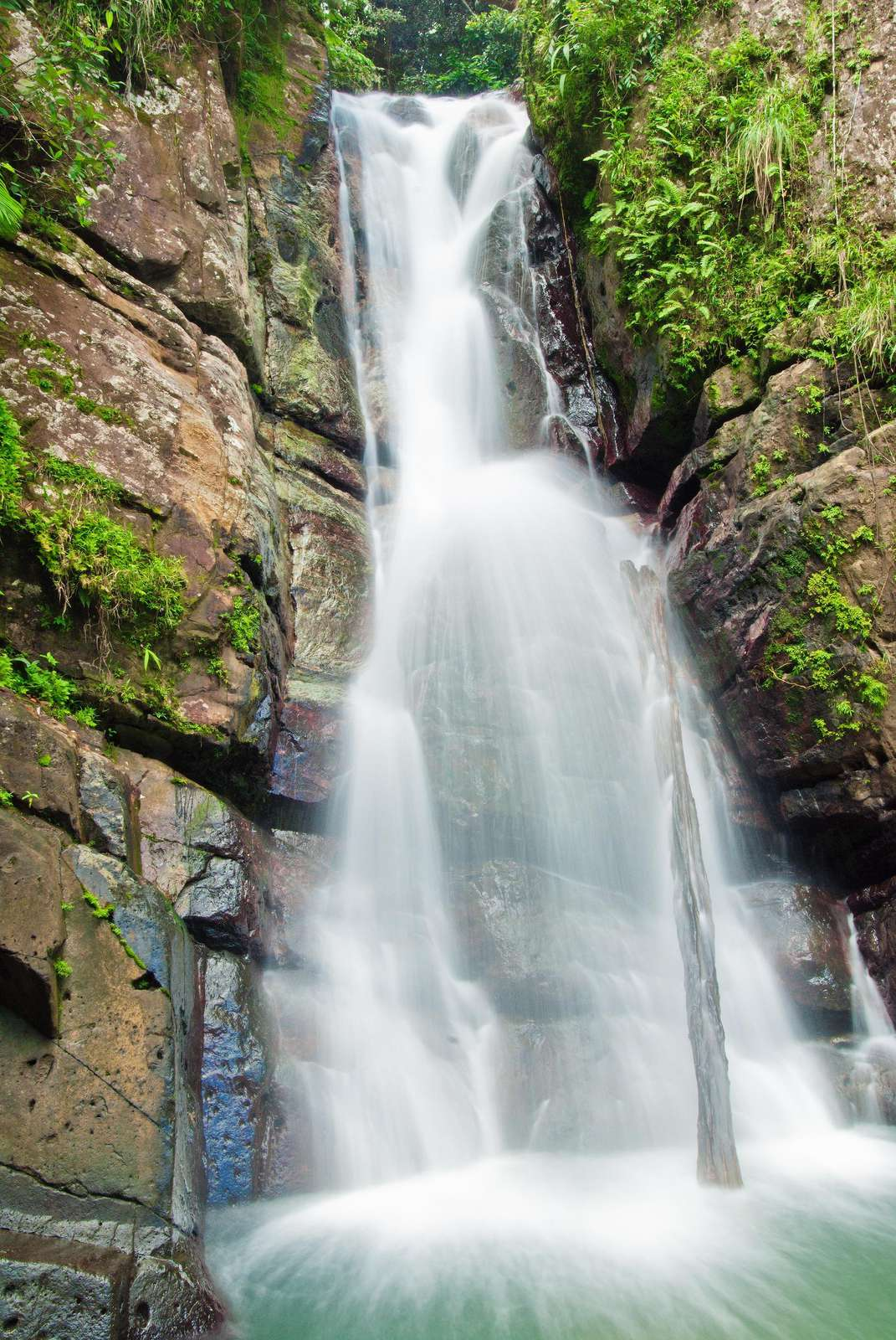 El Yunque rain forest is a must during your stay