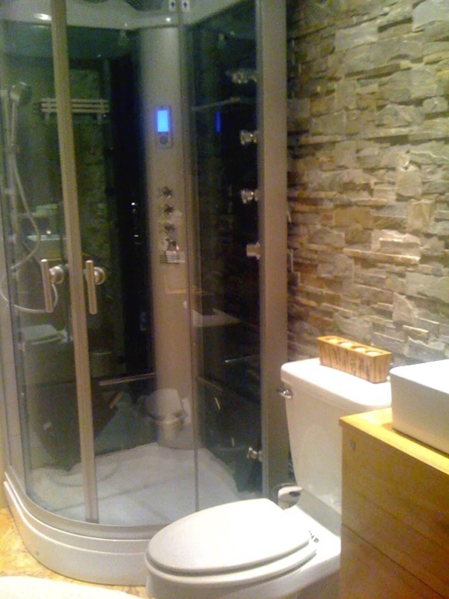 Steam shower in modern bathroom
