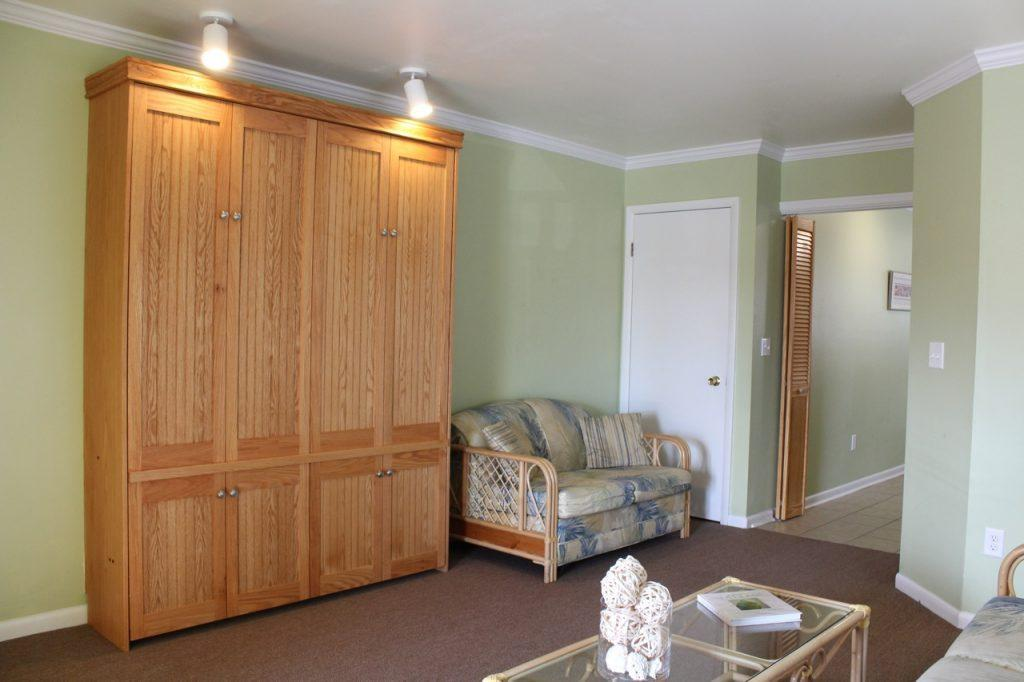 Living area Murphy bed