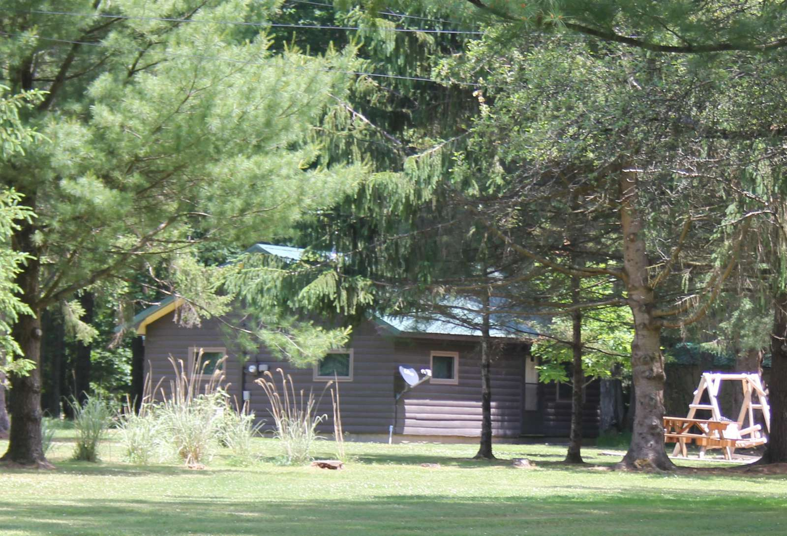 Back lawn area of Twin Oaks Cabin