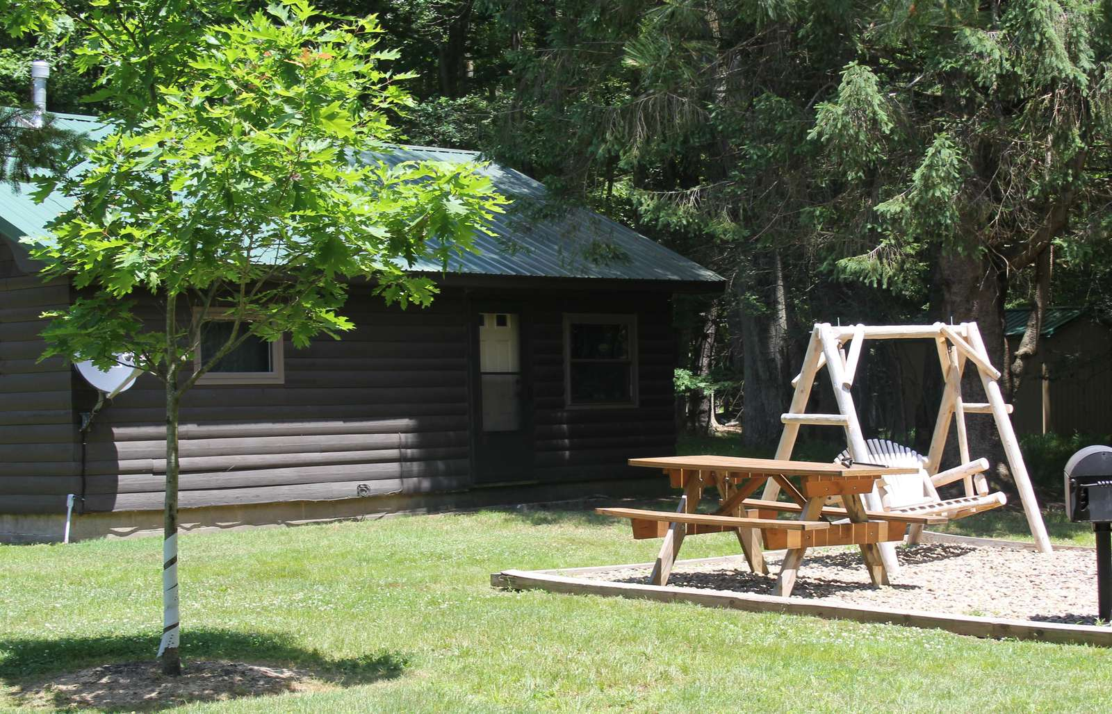 Twin Oaks Cabin showing back yard with swing