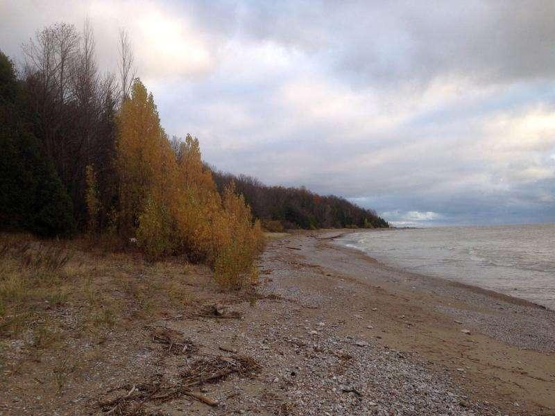 Beach around the Bay