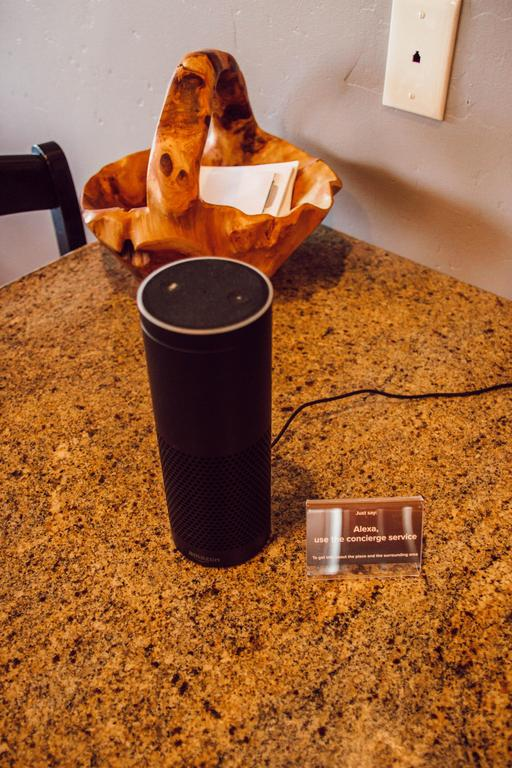 Alexa speaker programmed to answer all your questions