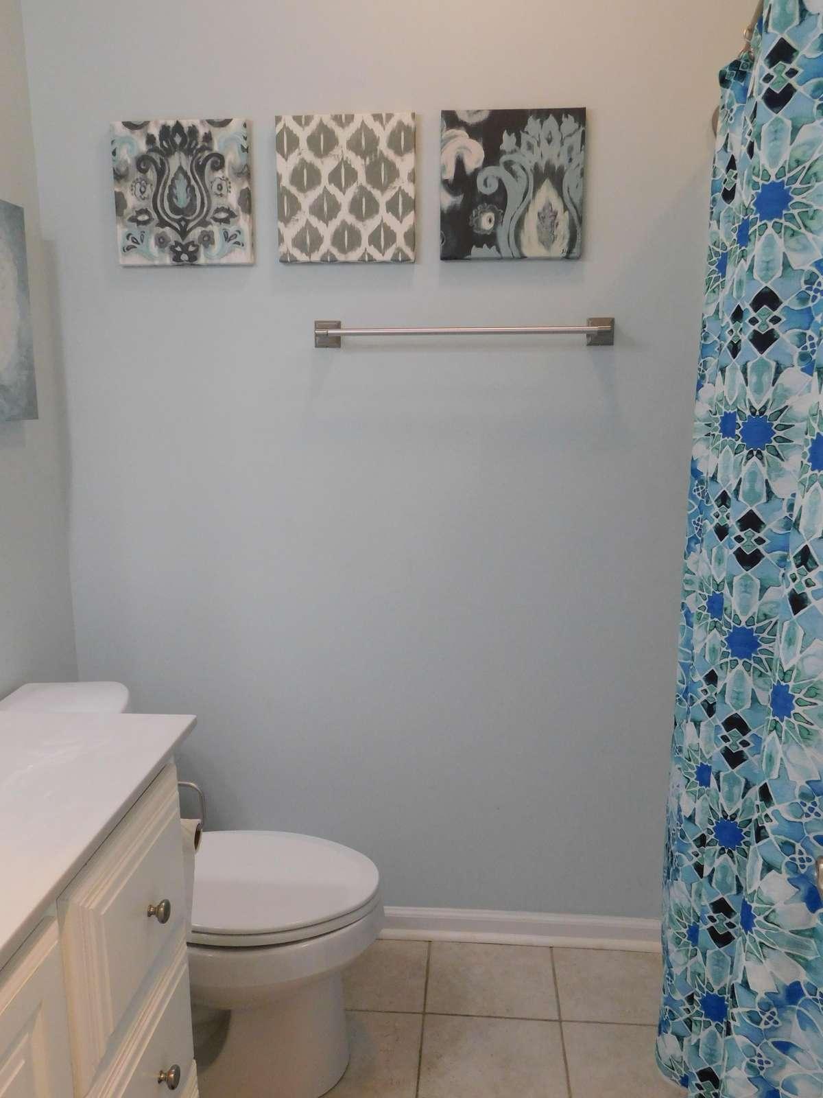 Hall Bath Tub/Shower combo