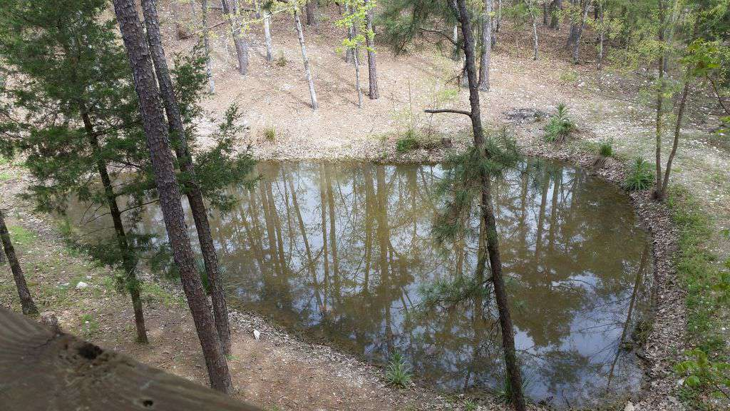 Fishing Pond, View from wrap around porch