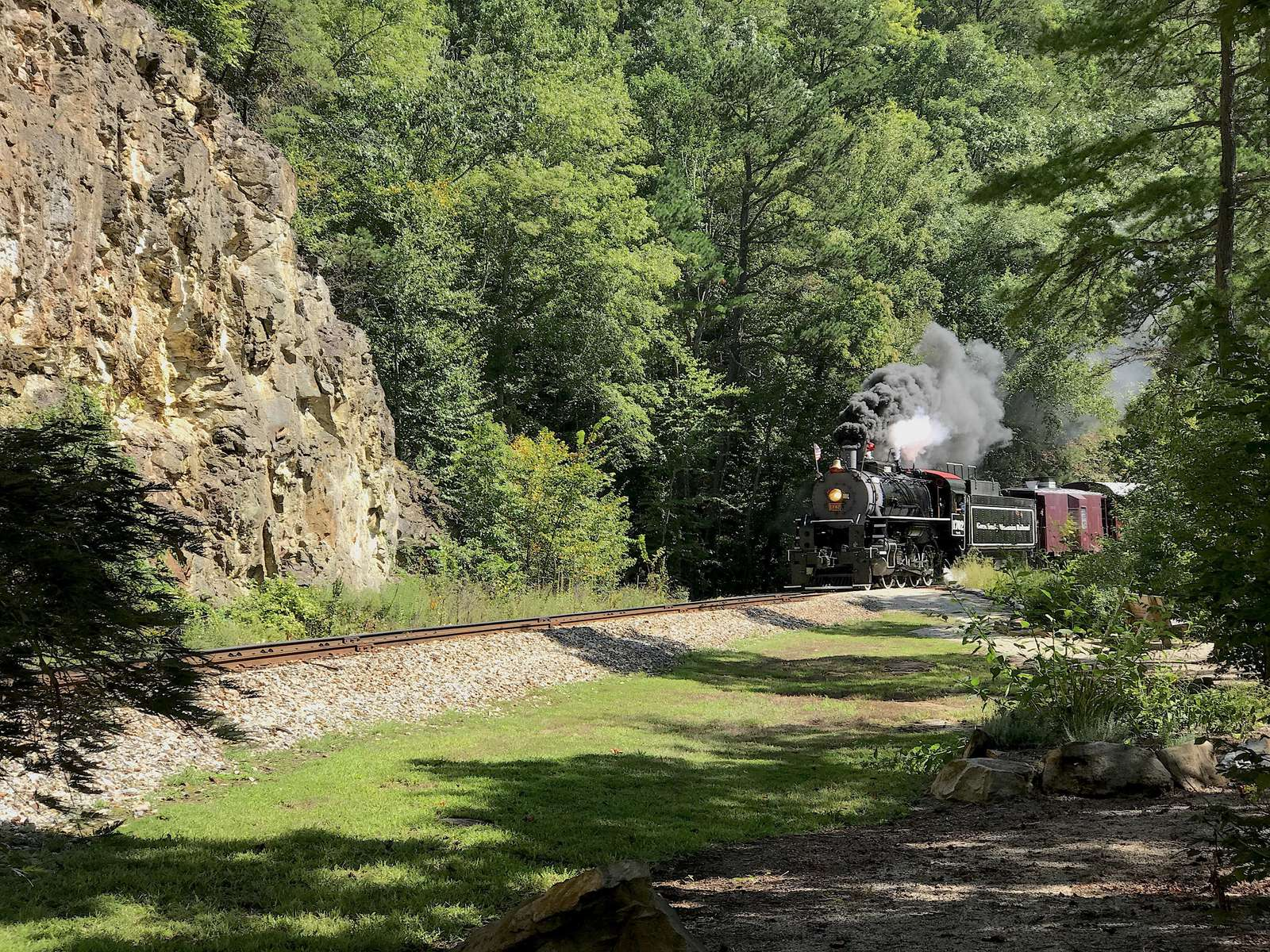 The Scenic Train from Bryson City passes above the Lake Front Docks on the way to the N.O.C.