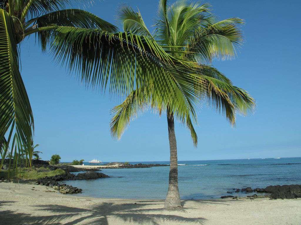 Honokohau Harbor Beach is about 4 miles north of Kona.