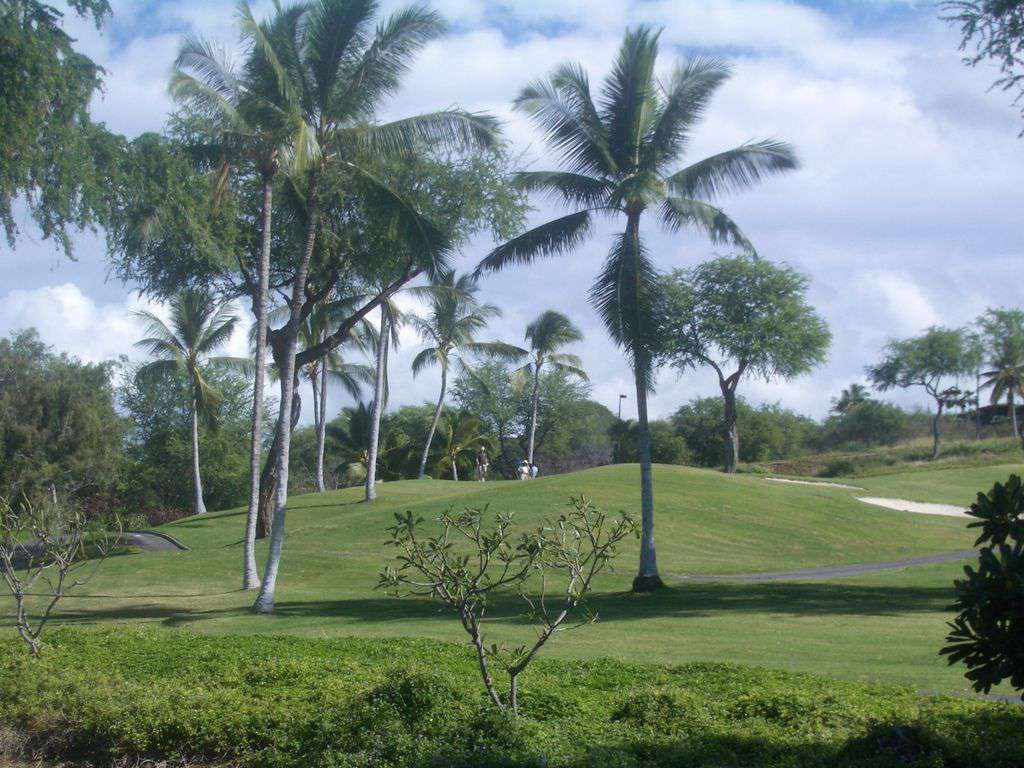The Keauhou Golf course is OPEN!!!
