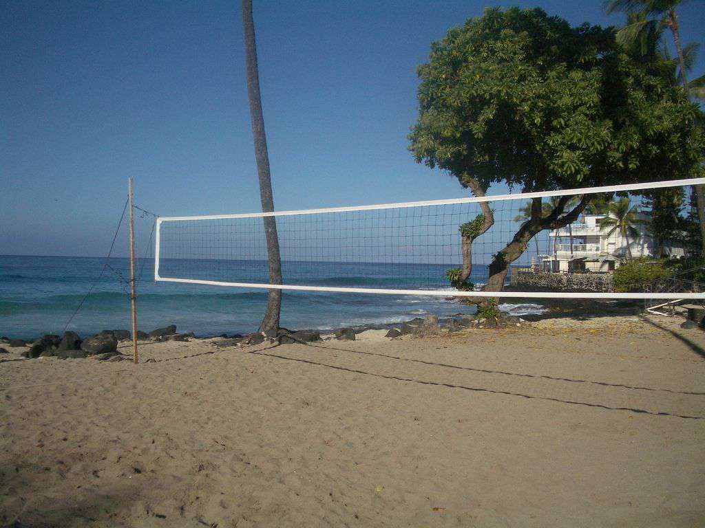 Enjoy some beach volleyball at La Aloa Beach Park.