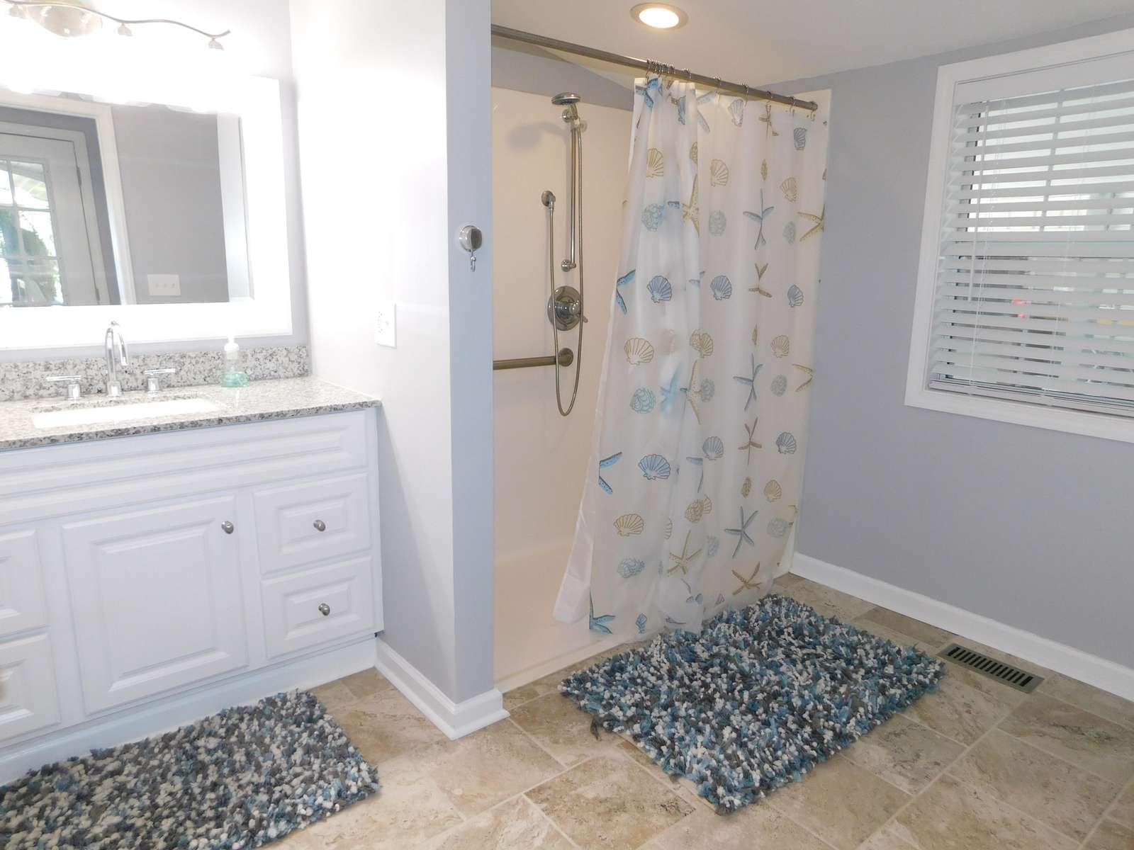 Full Handicap Bathroom
