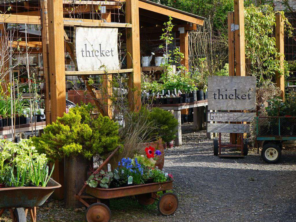 Garden store Thicket is not to be missed, it is like walking through a Sunset magazine ad.