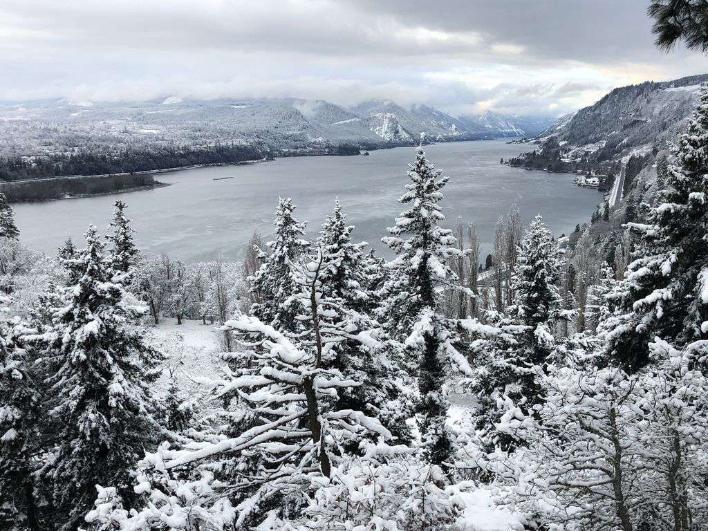 The Columbia Gorge, a 1 hr drive, is breath taking. We have suggestions for you.