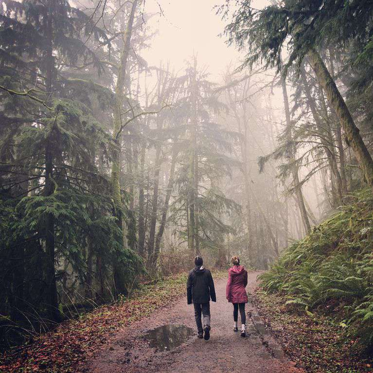 Forest Park an amazing hiking spot is right in PDX- hundreds of trails await you