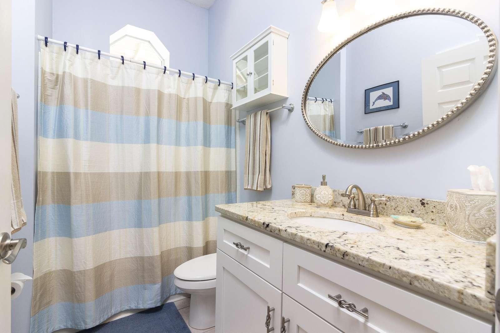 Guest Bath (first floor)
