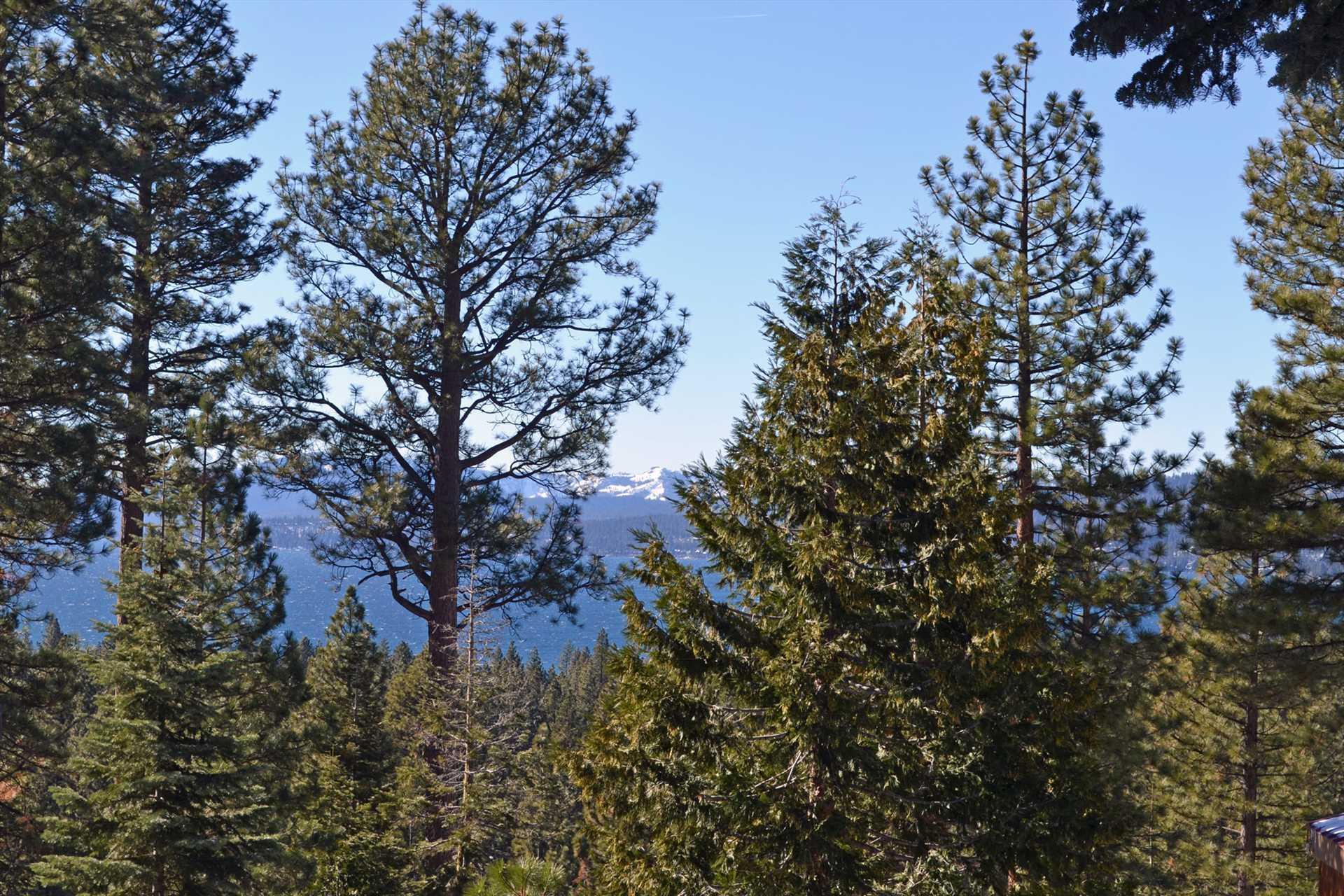Views of Lake Tahoe
