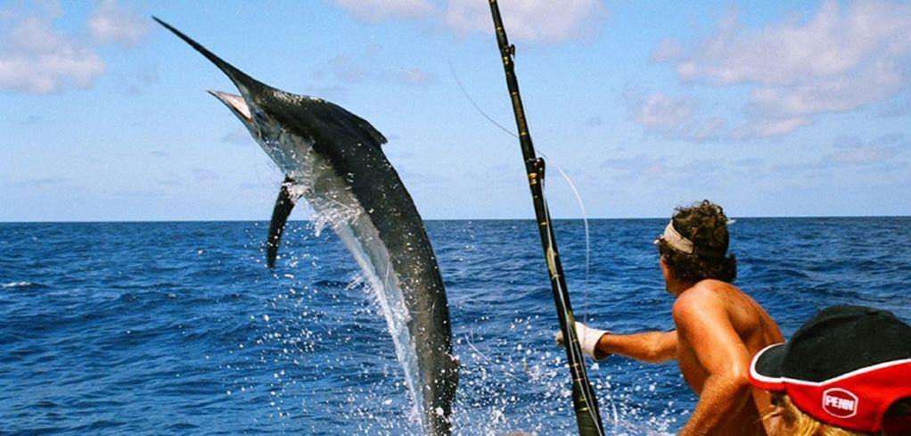 Charter a fishing trip from Olas Altas pier, only a 5 minute walk from your unit.