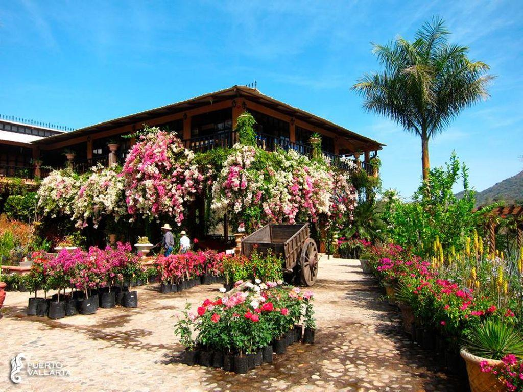 Puerto Vallarta's Botanical Garden, only 30 minutes from your unit on Ubber