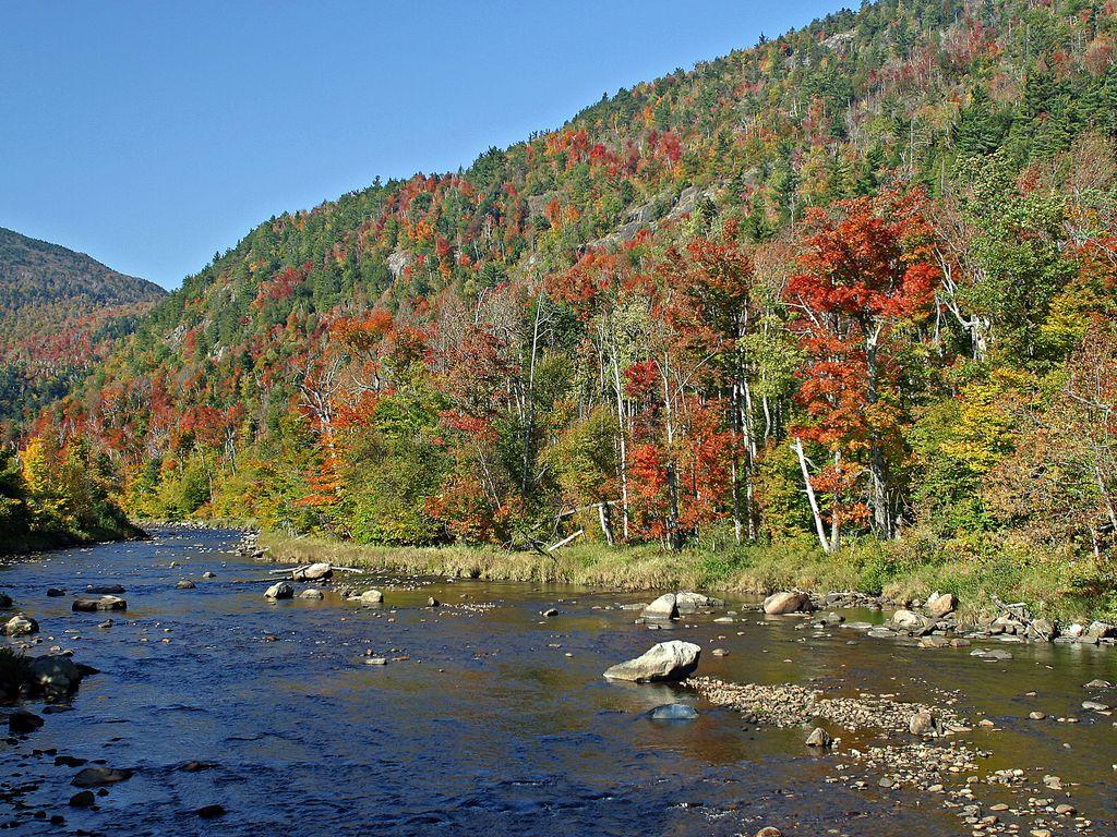 AuSable river just steps away provides beach access: fishing, swimming and more!