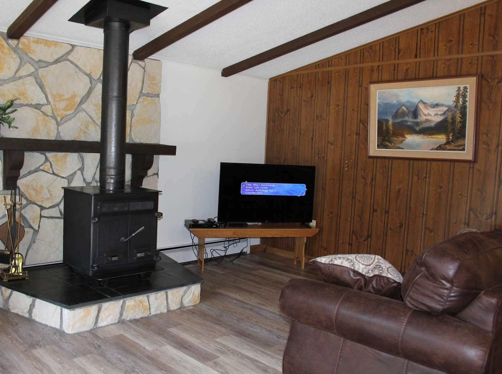 Living Room with Wood Burner and TV