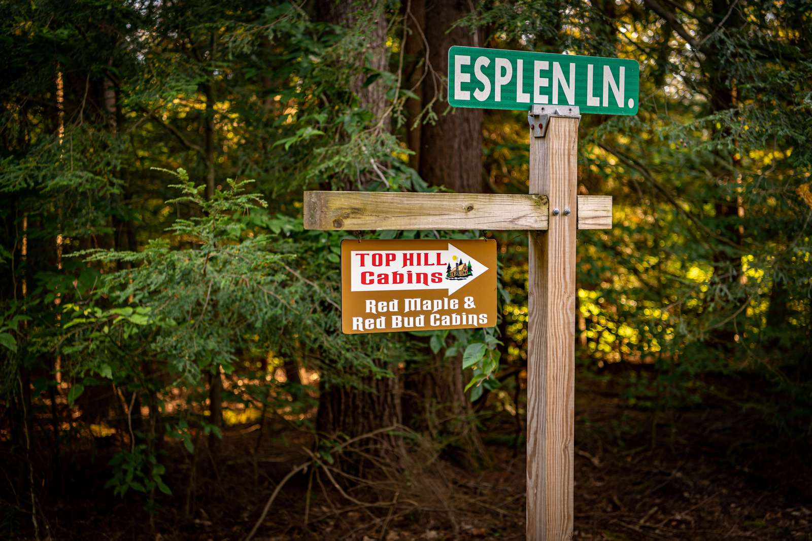 Esplen Lane Sign going to Red Bud Cabin