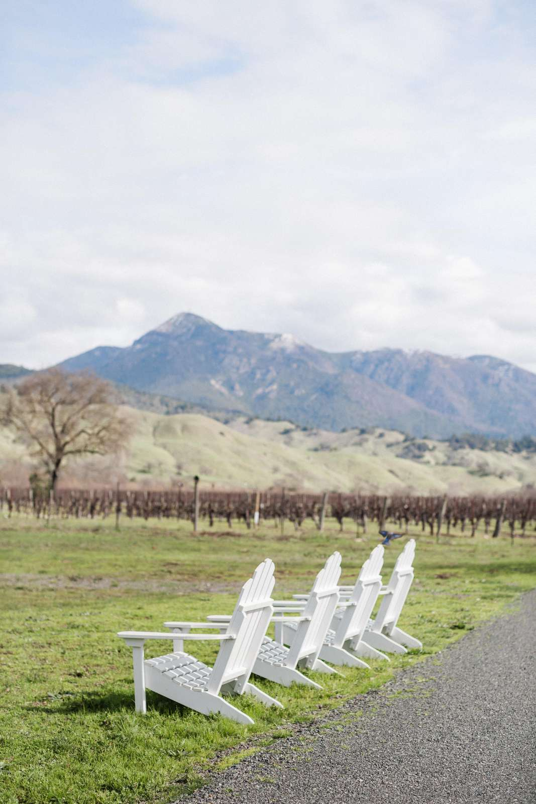 Adirondacks in the front with a vineyard and Mt. St. Helena view